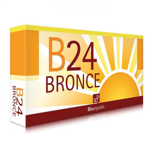 B24 Bronce